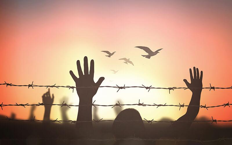 Bild zu Freiheit und Gerechtigkeit