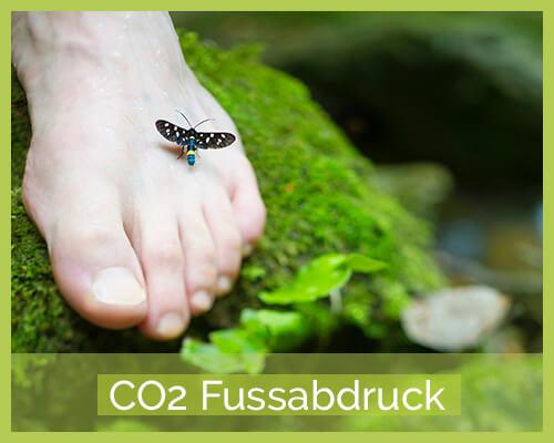 Kategoriebild CO2-Fussabdruck