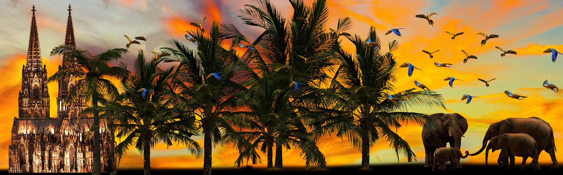 Headerbild Dom unter Palmen